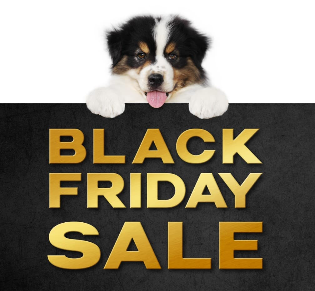 Pet Smart Black Friday Sale