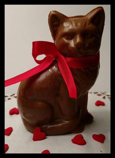 Cat candy Valentine's day gift