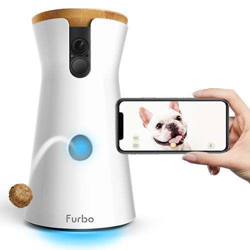Furbo for Valentine's day gift from your dog