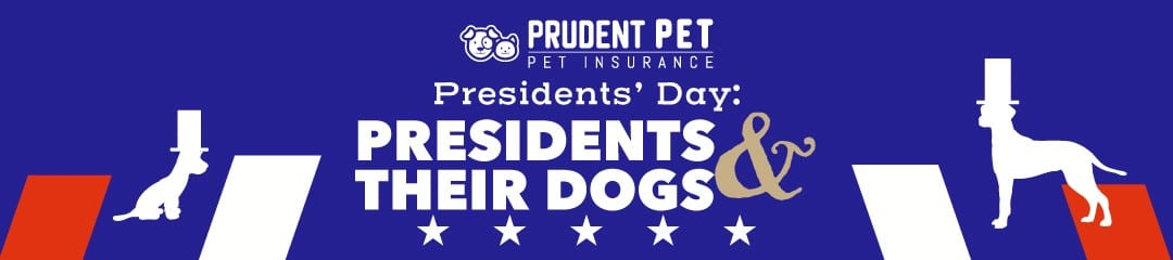 Presidents dogs post from Prudent Pet