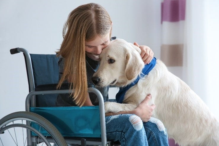 Dog and girl in a wheel chair hugging