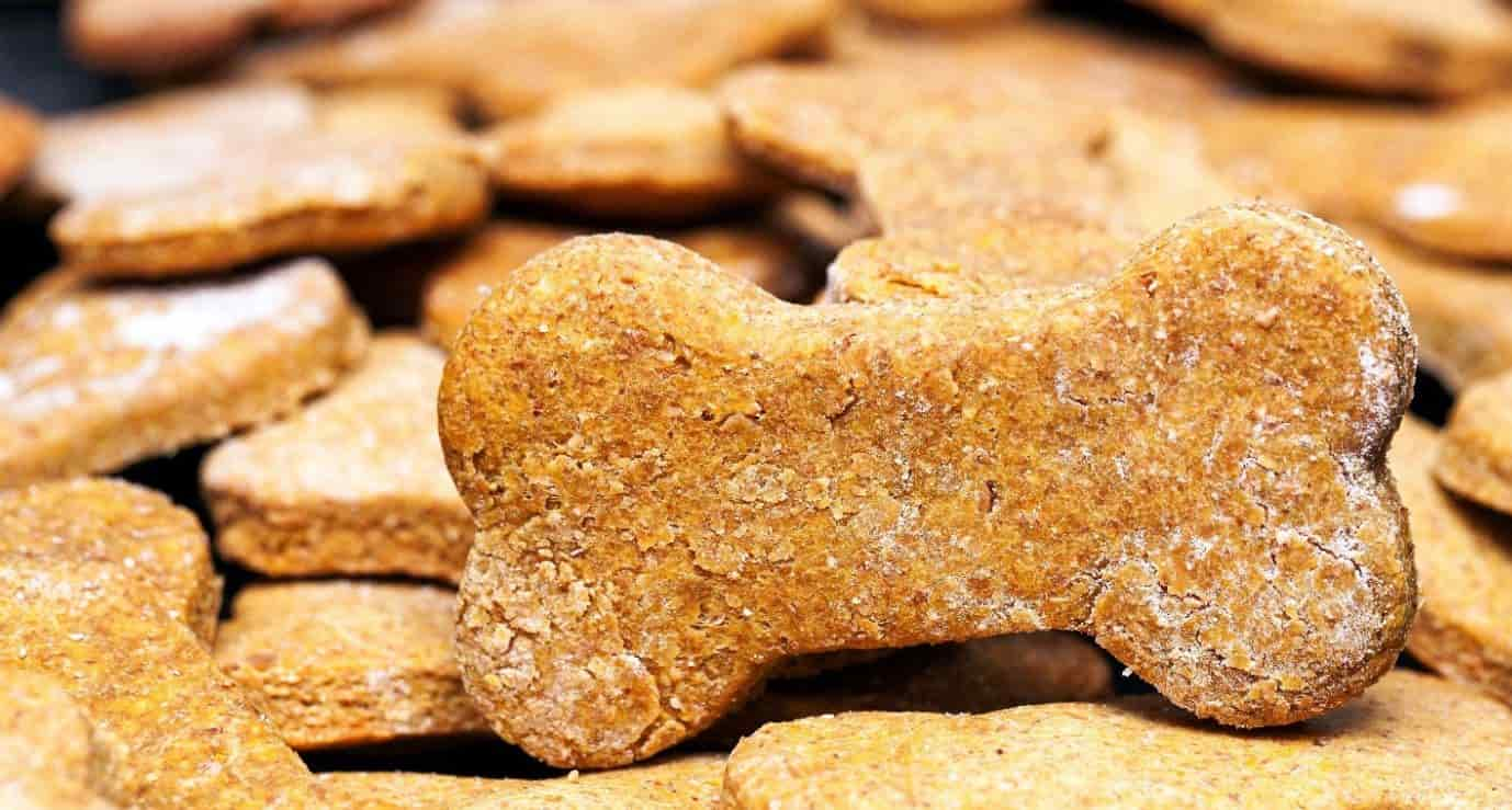 Broth treats for dogs