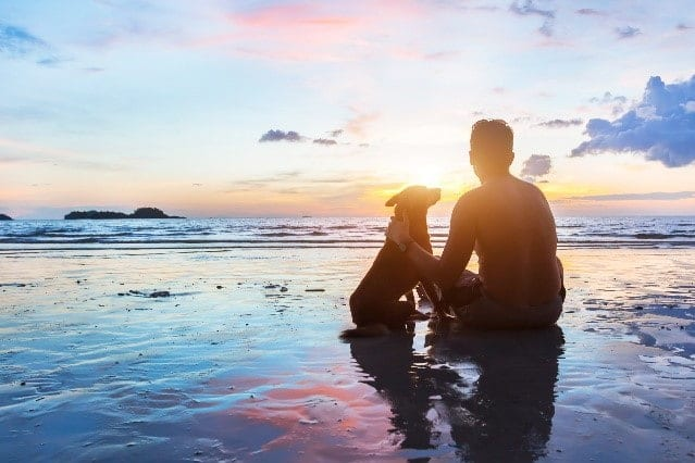 Dog and its parent stay at a beach