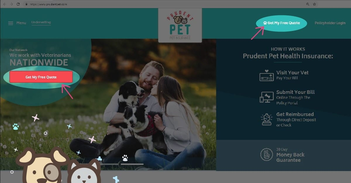 How to get a pet insurance: Step 1