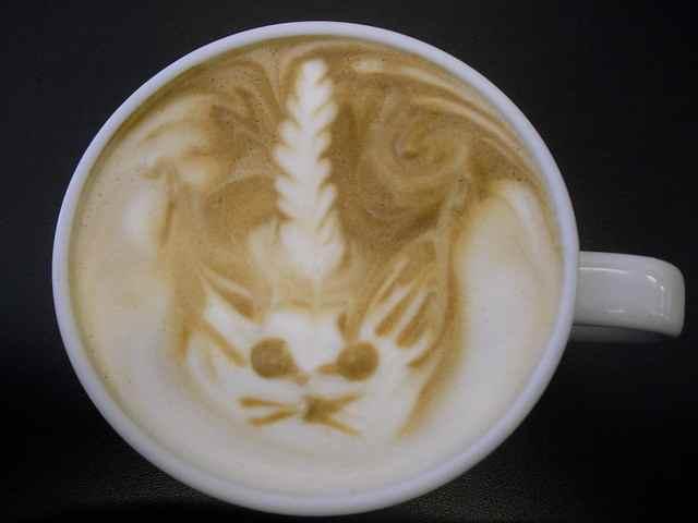Caticorn latte in a cup