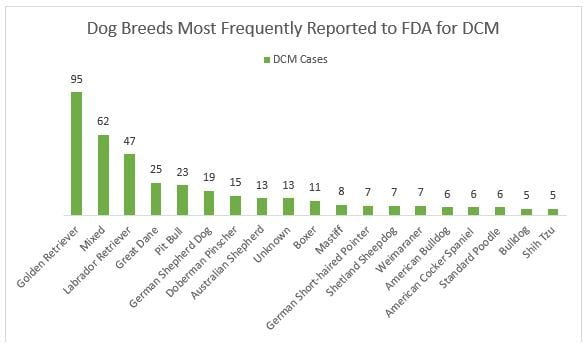 Dog breeds most frequently