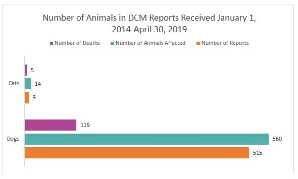 Number of animals in DCM reports