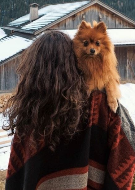 Dog held by woman in winter