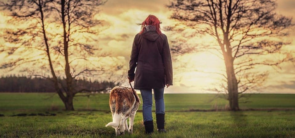 Woman walk with dog in the evening