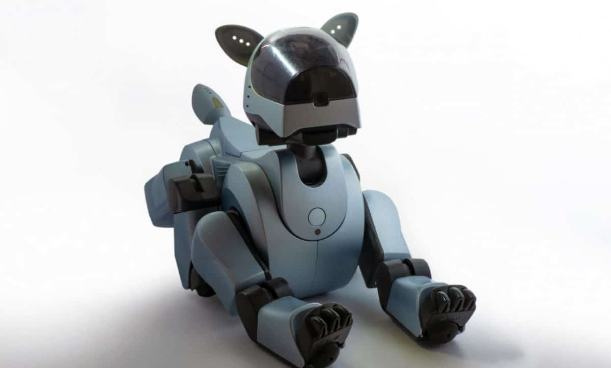 Dog robot in the white background