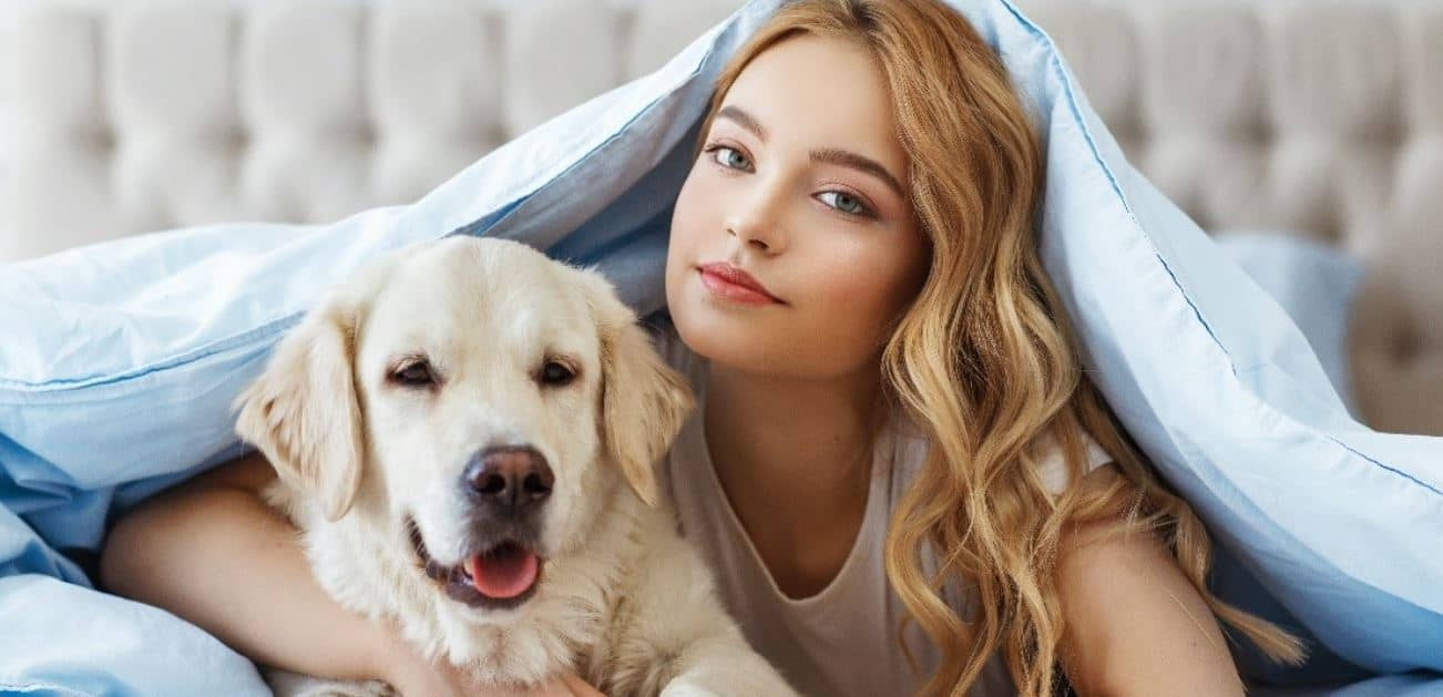 Labrador and woman in blanket