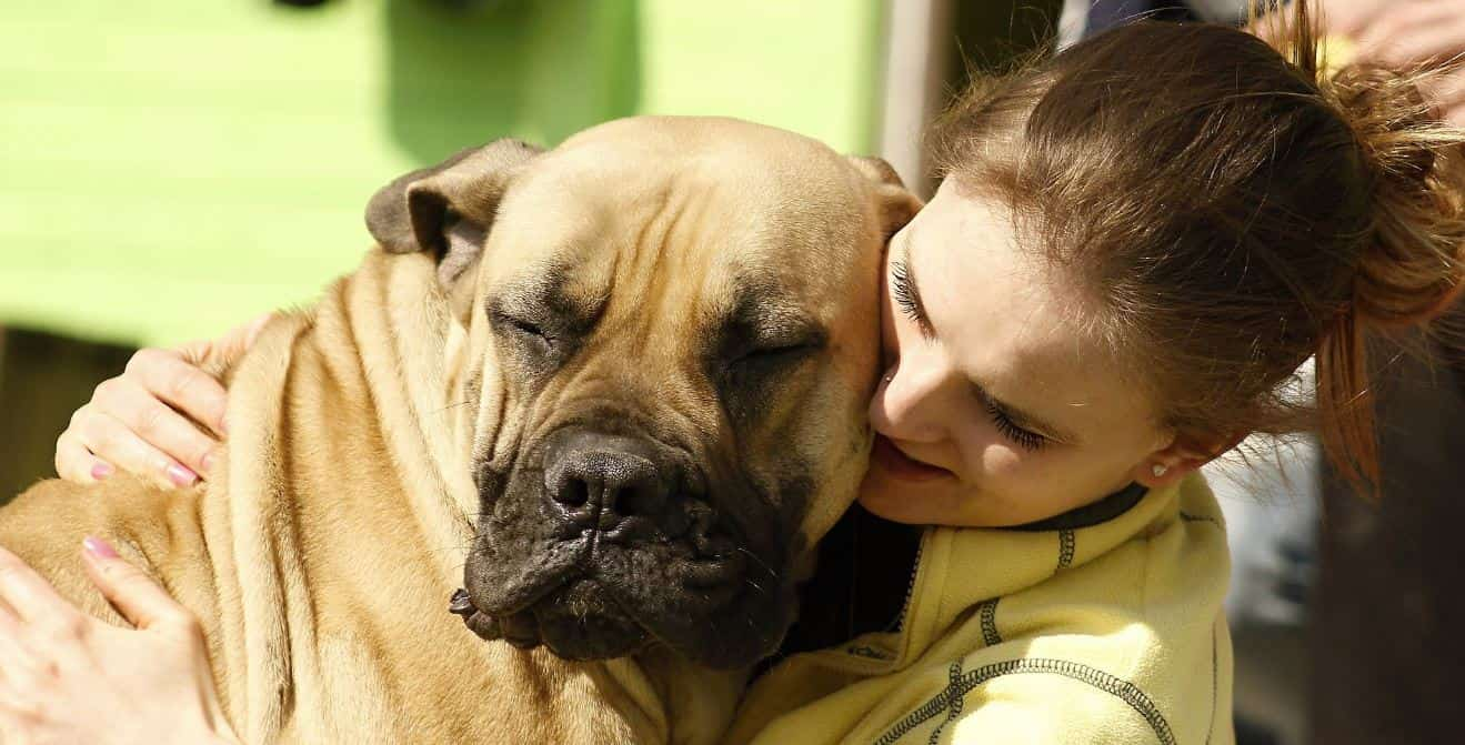 Woman hugs dog