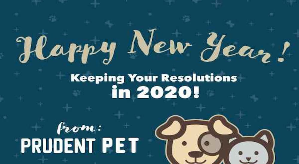 Prudent Pet New Year resolution 2020