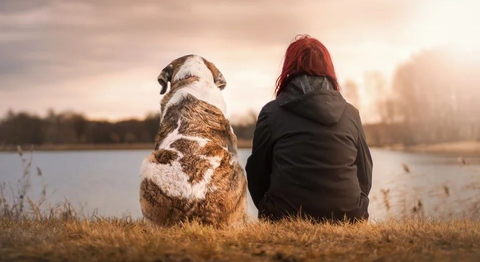 Dog and woman sit by the lake