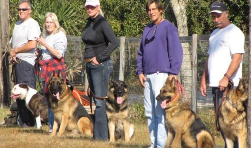 Dog owners attend dog training class