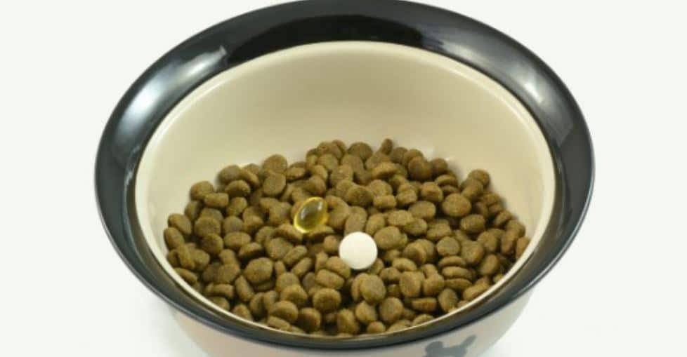 Pills in pet's food