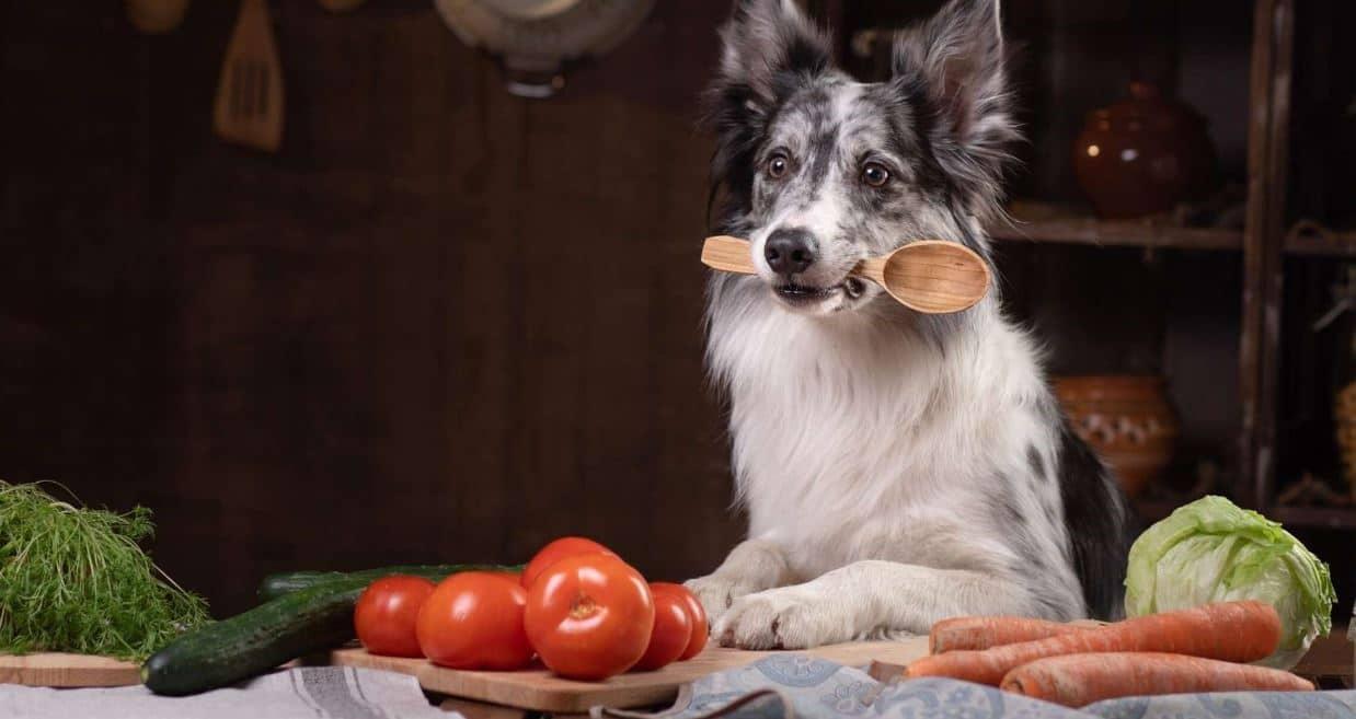 Dog preparing vegetables to cook