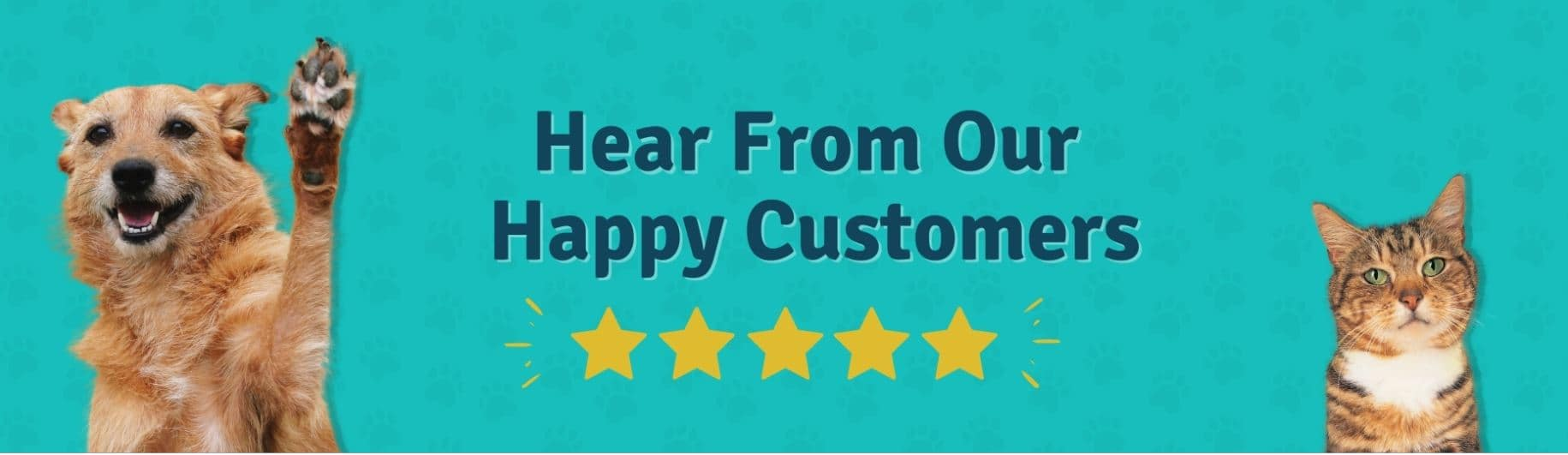Prudent Pet recieves many positive reviews from happy customers