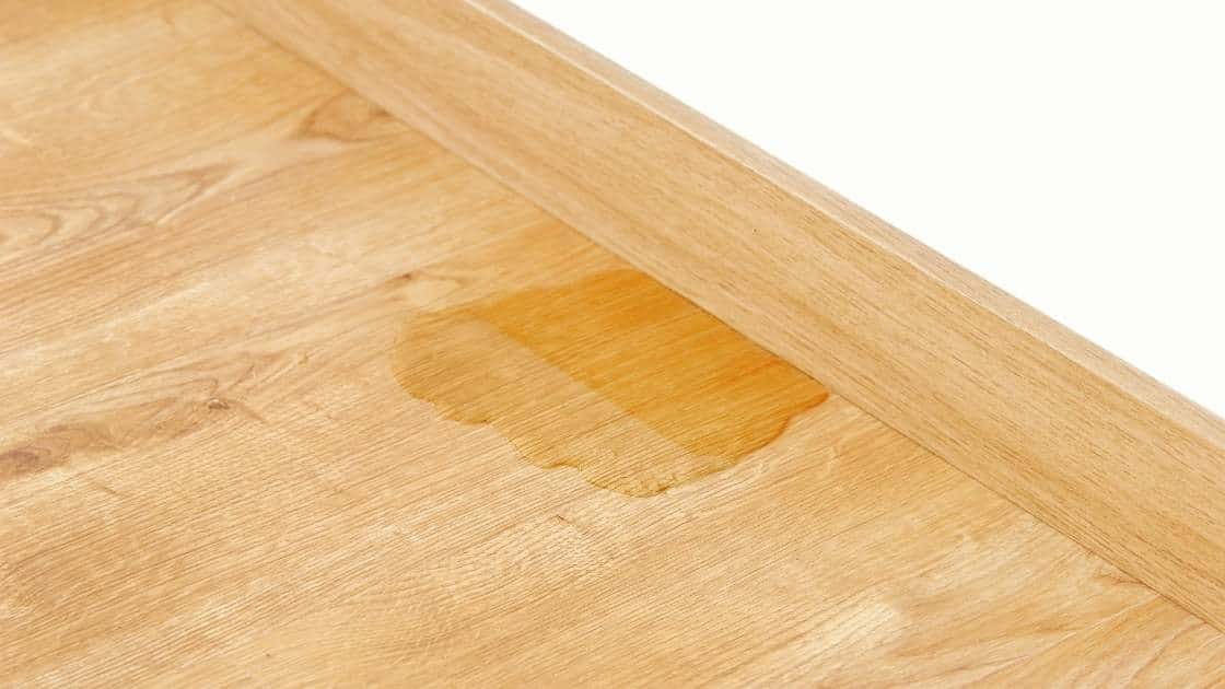 Cat pee on hardwood floor