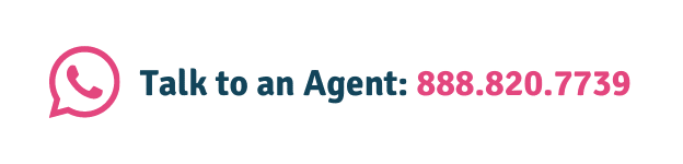 Prudent Pet agents are ready to help
