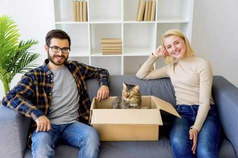 woman and man sitting with a cat in a box on a couch