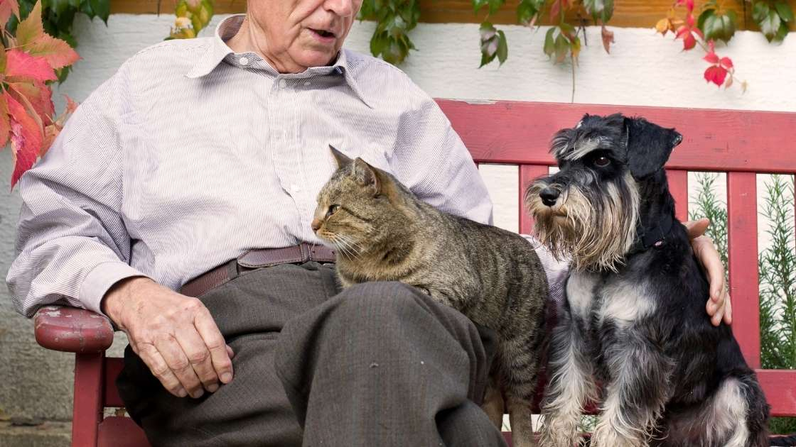 Old man sitting with cat and dog on red bench