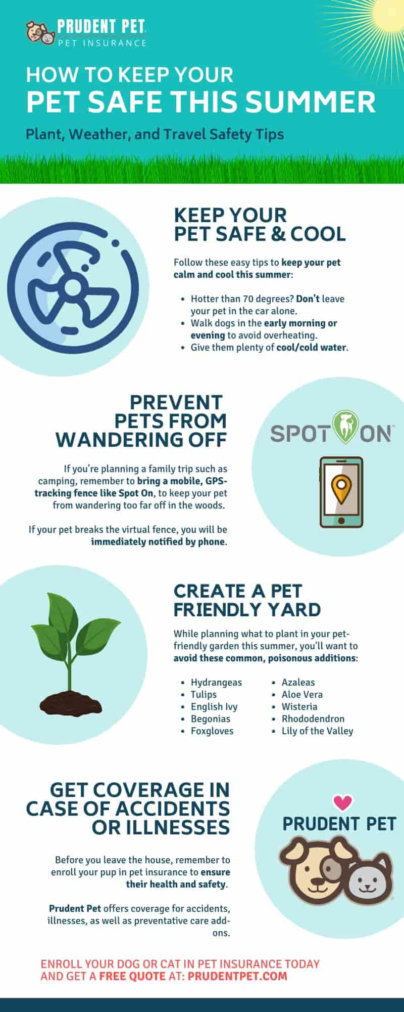 Prudent Pet infographic for summer safety tips