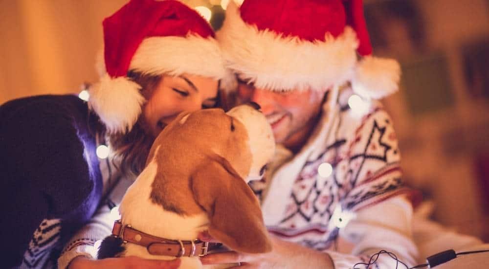 A Santa couple and dog